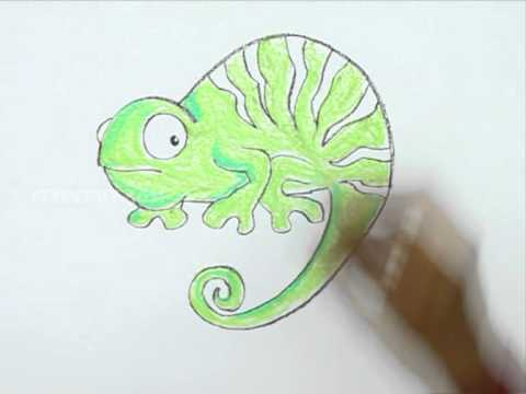 how to draw a simple chameleon
