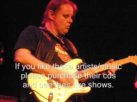 Walter Trout - If You Ever Change Your Mind