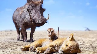 "THE LION KING ""Timon & Pumbaa Rescue Simba"" Clip (2019)"