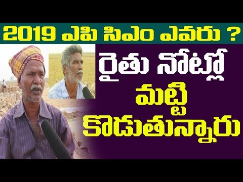 Pubilc Talk On Who Is The Best Politician In Ap || Who Is Next Ap Cm | Pubilc Naadi | Public Pulse