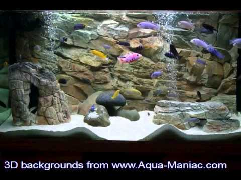 Aquarium Decor Themes Aquarium Decoration From