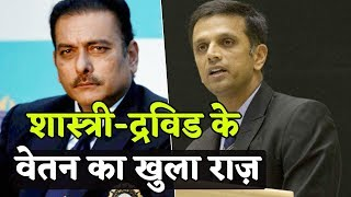 जानिए India के कौन से Coach को मिलती है कितनी Salary, BCCI ने कर दिया बड़ा खुलासा