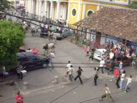 Tope de toros Granada 09-08-09