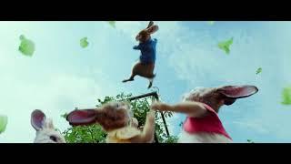 Peter Rabbit - Trailer italiano ufficiale | Dal 22 marzo al cinema