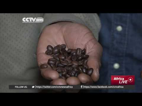 Blind But Scaling Heights As Coffee Connoisseur In South Africa's Capetown