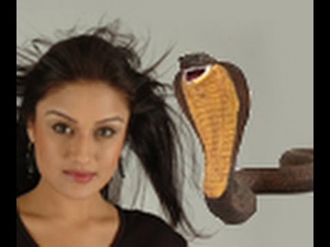 A Snake created problem in Sonia's film