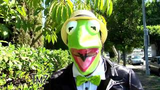 Kermit talks gay Bert and Ernie on TMZ