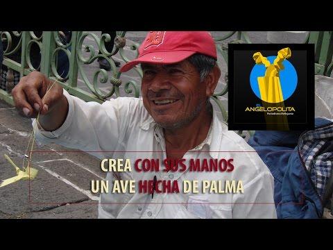 Crea con sus manos un ave hecha de palma (Puebla)