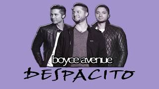 download lagu Luis Fonsi - Despacito Ft. Daddy Yankee Boyce Avenue gratis