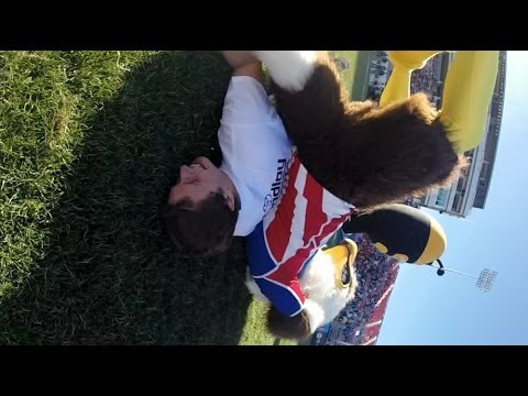 Rookie the Eagle takes out a Spain Fan