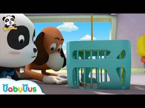 추석케이크 사라졌다!| 도둑은 누구지?|키키묘묘 3D애니메이션|베이비버스 인기동화