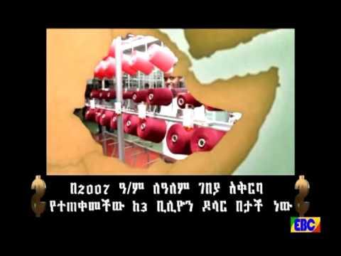 Ethiopian  Documentary from Ebc  ህልውና…ሐምሌ 7/2008 ዓ.ም