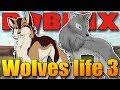 (15+) VENDALI A BOZI ZJIŠŤUJÍ, JAKÉ JE TO BÝT VLKEM:D | ROBLOX: Wolves life 3