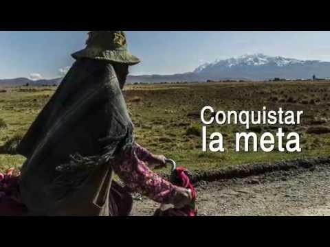 Manifiesto Proyecto Mercados Rurales de la Cooperación Suiza en Bolivia
