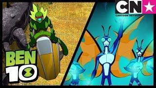 Ben 10 Alien Worlds | Widvine and Stinkfly | Cartoon Network