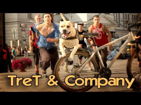 TreT & Company (Parkour Dog)