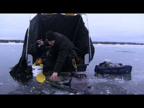 Little Bay De Noc 2013 Ice Fishing Walleyes