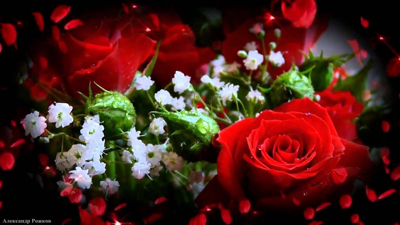 обои на рабочий стол самые красивые розы для тебя № 164843  скачать