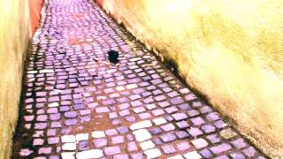 Strada Sforii Tells Your Story - pigeon & camera [part1] : tint2