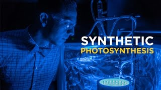 Fernando Uribe-Romo on Synthetic Photosynthesis