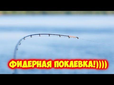 рыбалка верхнедвинский район