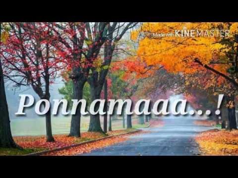 Ponnamma Ninna Notithe