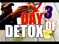 Your three-day detox Diet ( GET YOURSELF FIT ) | Chef Ricardo Cooking