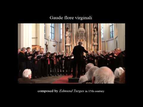Edmund Turges - Gaude flore virginali a 5