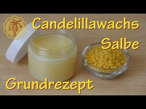 Candelillawachs-Salbe selber machen - vegan - Grundrezept