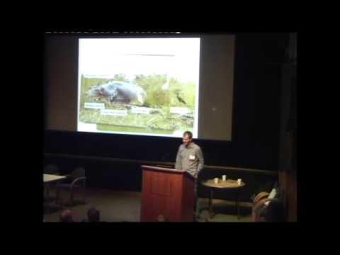 Jason Anderson on taxonomy of the bird life of Rwanda