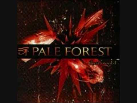Pale Forest - Urban Walls