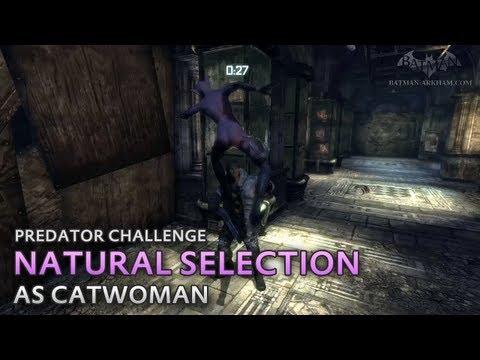 Batman Predator Challenges Arkham City Batman Arkham City Natural