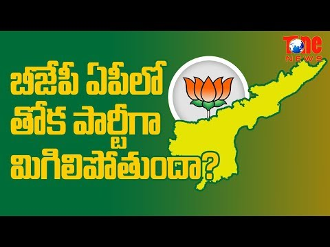 Whom BJP Will Tie Up With In AP ? | AP Political News | NewsOne