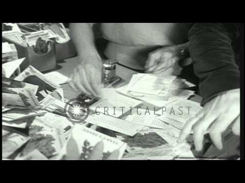Members of the Committee for a Free Asia work in San Francisco, California. HD Stock Footage