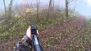Chasse 2014 France Battues Sangliers Haute Marne Decembre 14 Driven Boar Hunting