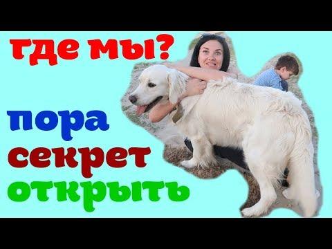 Наша собака // Деревенские будни // Аутизм // Our dog // Rural everyday life // Autism