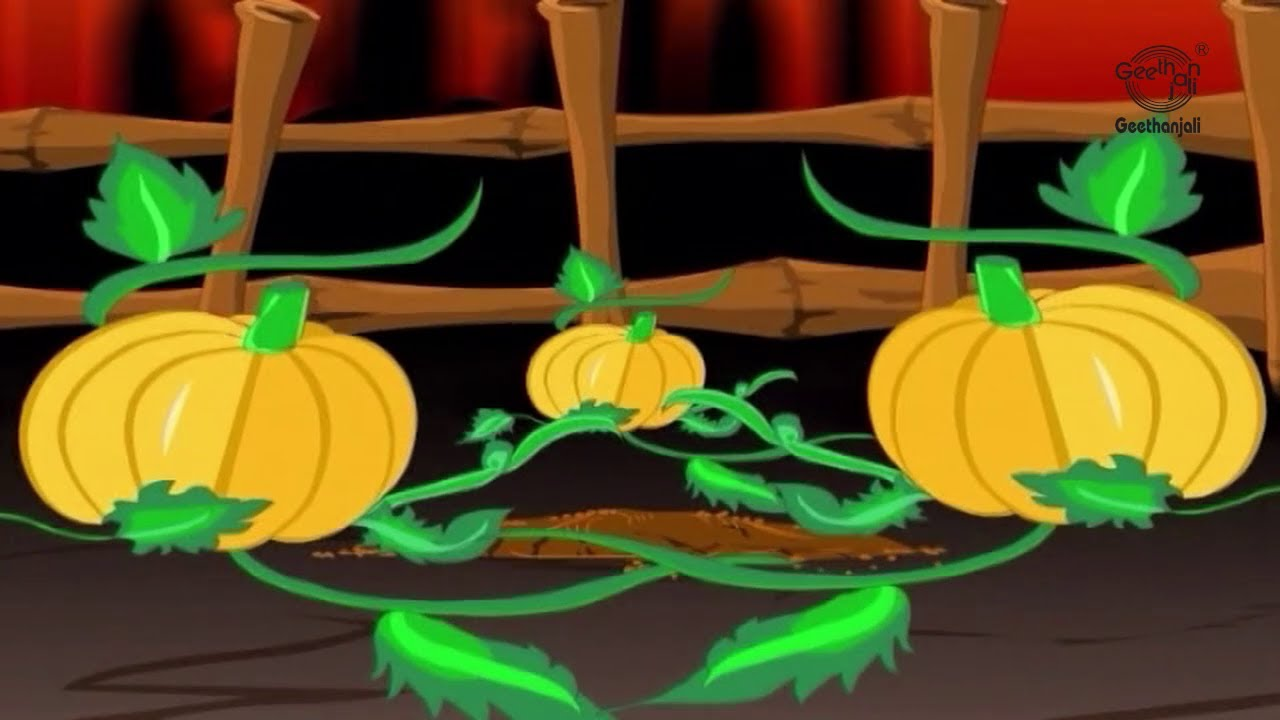 Image result for the three magic pumpkins