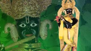 Swaminarayan Non Stop Raas Kirtan - Rasiyo Raas Rame Ho Raj