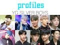 yg silver boys profiles // unhelpful guide