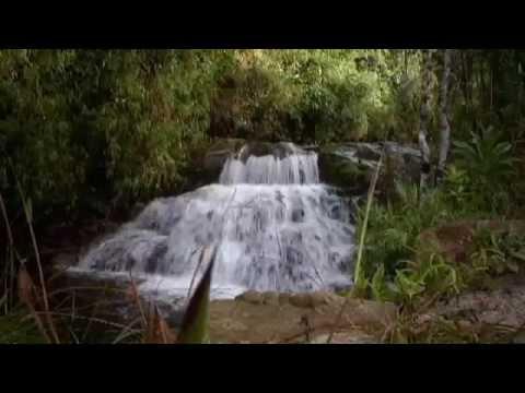 Asofrayle Premio Caracol TV a la Protección del Medio Ambiente 2013
