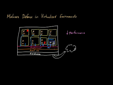 Malware Defense in Virtual Environments