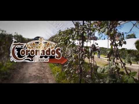 CORONADOS MUSICAL - Y Vete (Video Oficial 2015)