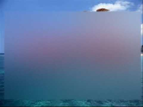 Gina T - Sail Over Seven Seas