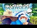 SeaWorld Orlando Was Disappointing | The Good, The Bad, and The Ugly