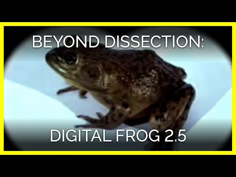 Beyond Dissection: Digital Frog 2.5
