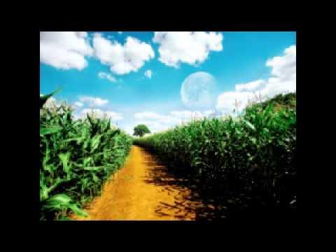 Haleema Main Tere Muqadraan-beautiful Punjabi Naat video