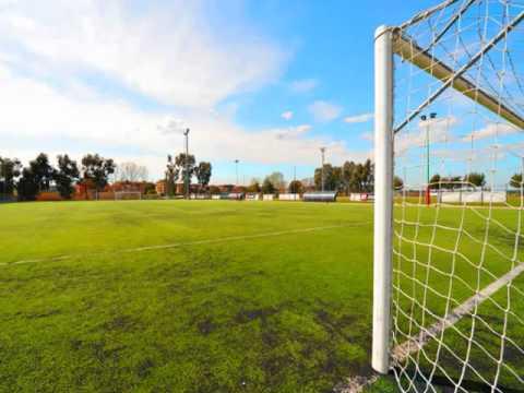 Luciano Ligabue – Una Vita Da Mediano – Segna il Gol più Bello Incredibile – Mental Coaching
