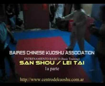 SAN SHOU / LEI TAI (Basic Training) Image 1