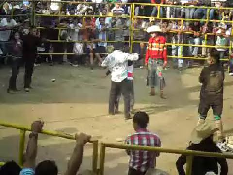 JUEGO DE ESTRIPTIS 2011