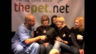 Expert advice for dog owners: Animal rescue in Asia
